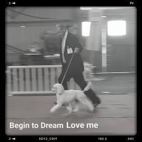 BEGIN TO DREAM Love me