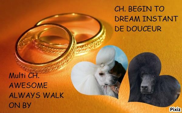 mariage walker ixia